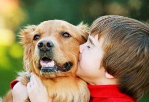 1-ребёнок-и-собака