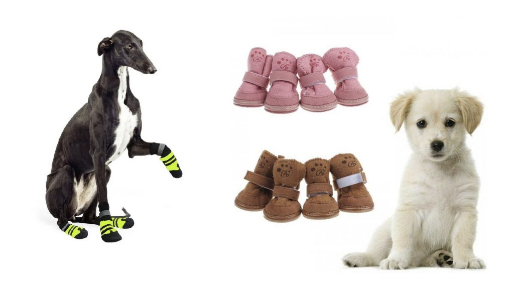shoes-for-dogs